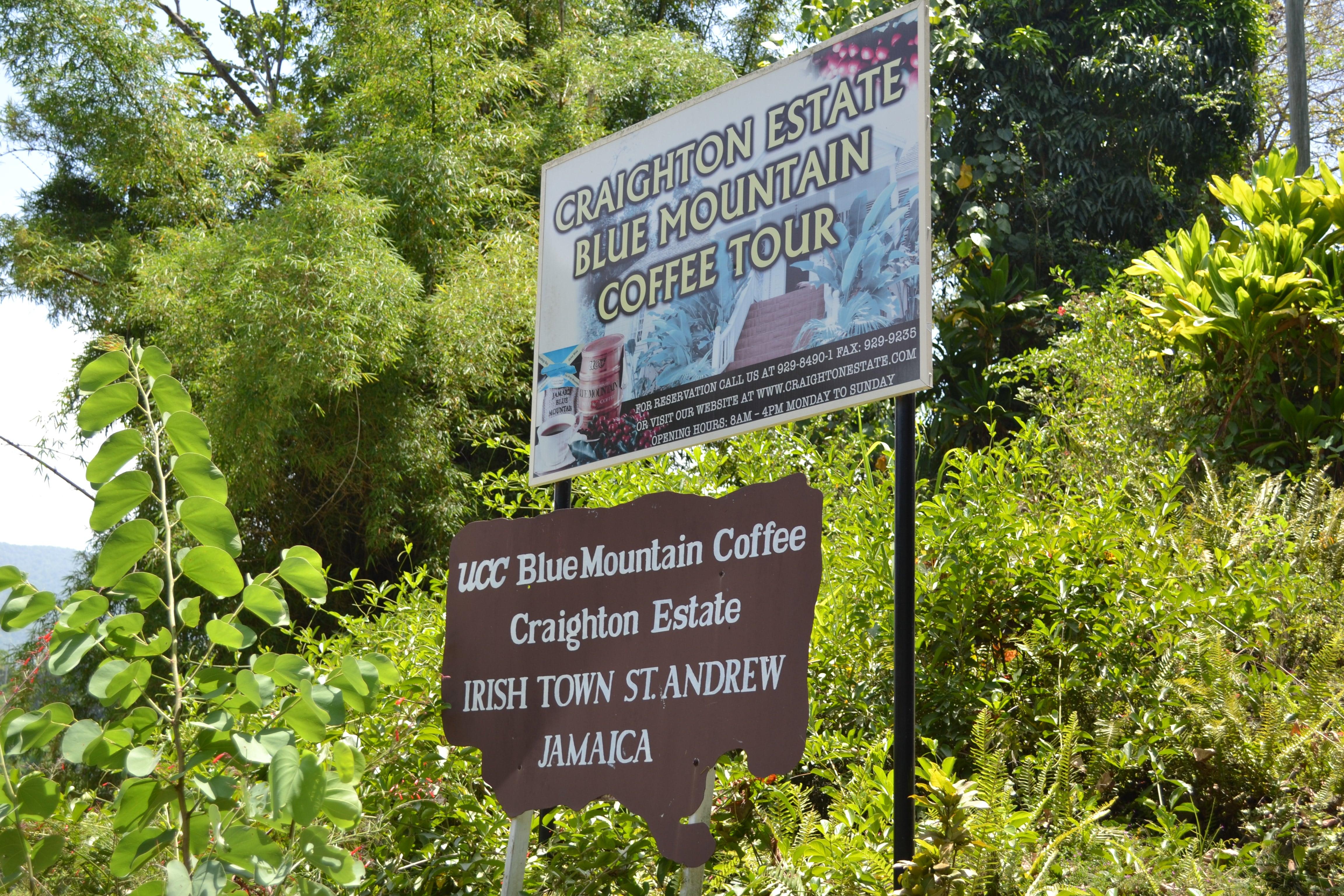 Blue Mountain Estate thegrio.com