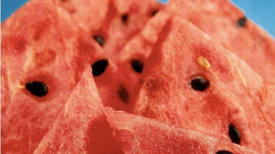 CDC warns residents in 8 US states of cut-fruit Salmonella outbreak