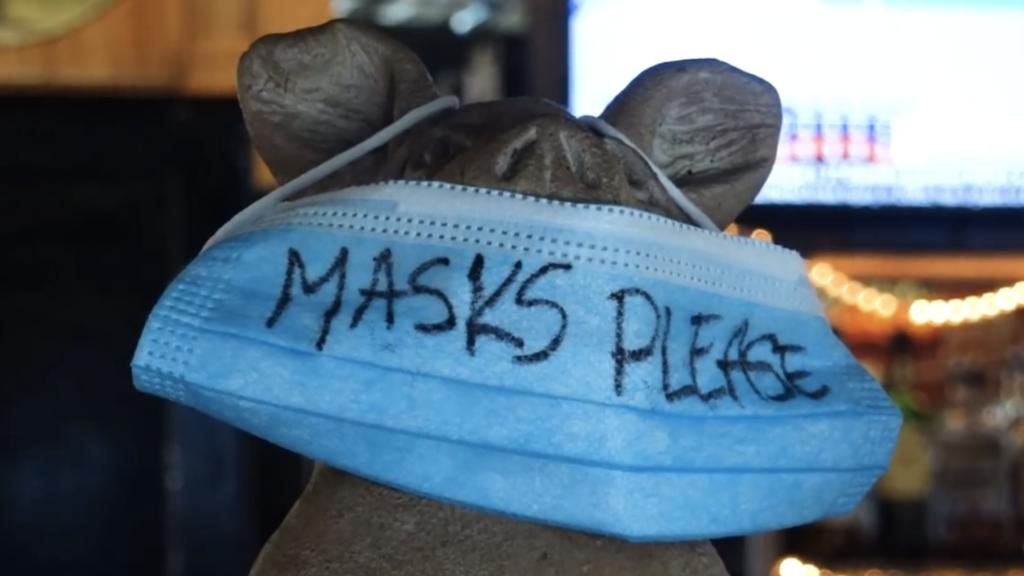 Maga hat gun mask BBQ