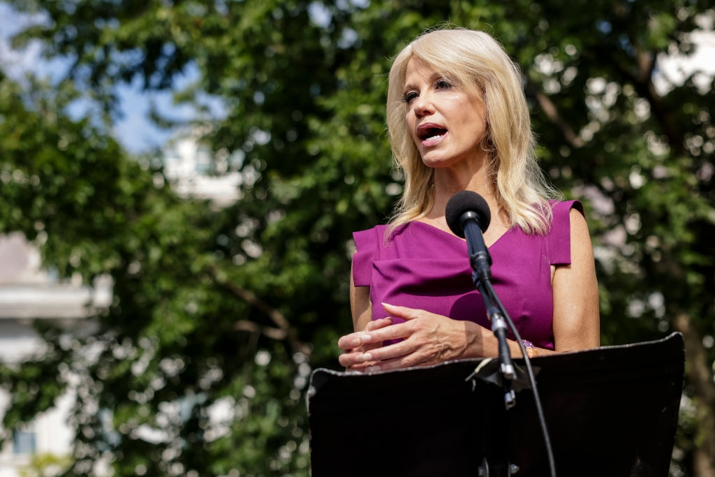 Kellyanne Conway Speaks To Reporters Outside The White House